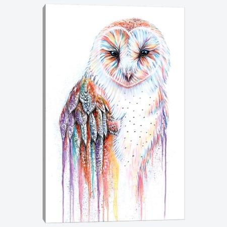 Barred Rainbow Owl Canvas Print #FAB1} by Michelle Faber Canvas Artwork