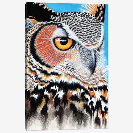 Great Horned Owl Eye Canvas Print #FAB25} by Michelle Faber Art Print