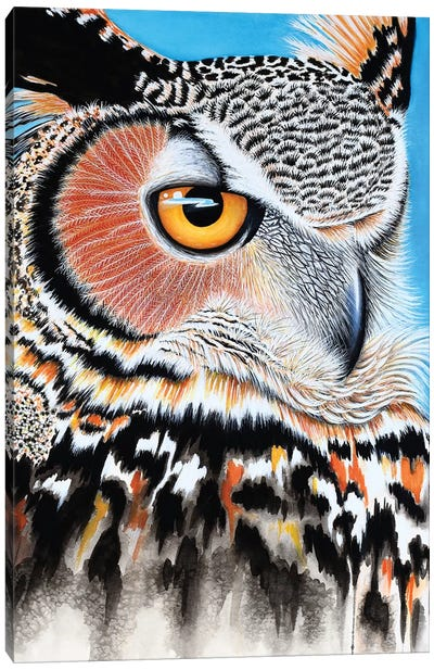 Great Horned Owl Eye Canvas Art Print