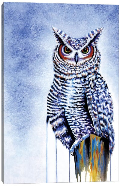 Great Horned Owl In Blue Canvas Art Print