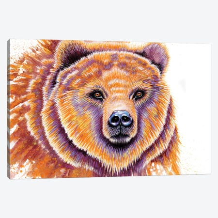 Grizzly Bear Canvas Print #FAB27} by Michelle Faber Art Print