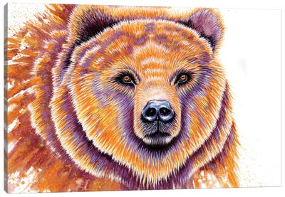 Grizzly Bear Canvas Art Print