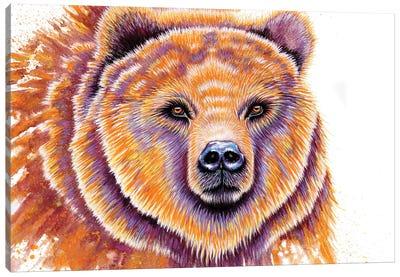 Grizzly Bear Canvas Art Print
