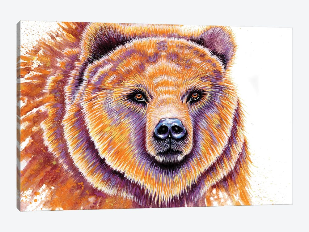 Grizzly Bear by Michelle Faber 1-piece Canvas Art