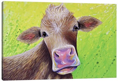 Jersey Cow Canvas Art Print