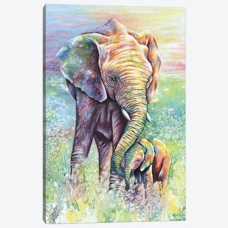 Mother & Baby Elephant Rainbow Colors Canvas Print #FAB33} by Michelle Faber Canvas Print