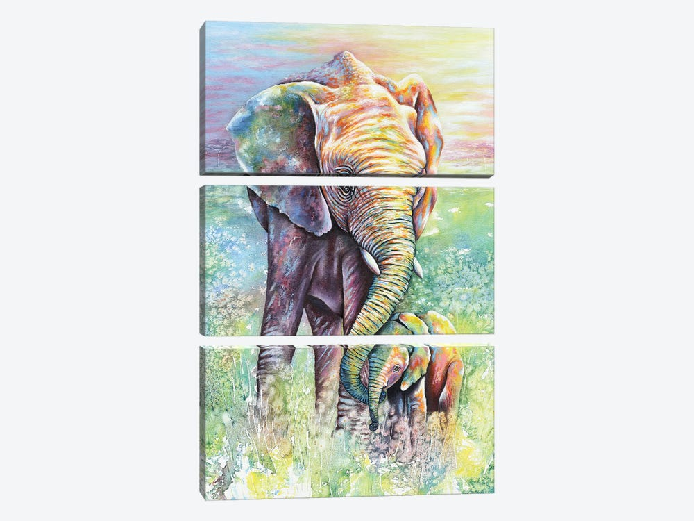 Mother & Baby Elephant Rainbow Colors by Michelle Faber 3-piece Canvas Print