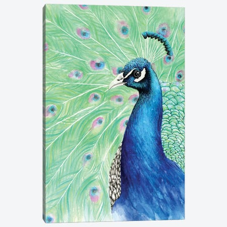 Mr. Peacock Canvas Print #FAB36} by Michelle Faber Canvas Art