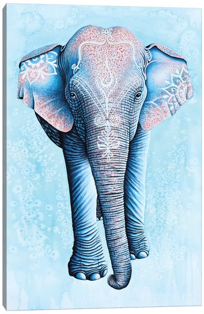 Painted Asian Elephant Canvas Art Print