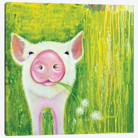Pig Canvas Print #FAB39} by Michelle Faber Art Print