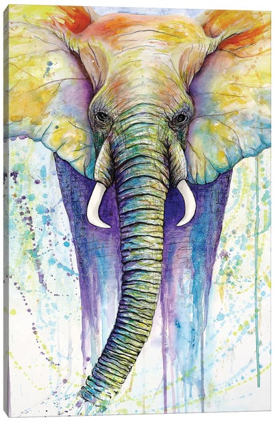 Elephant Colors Canvas Art Print
