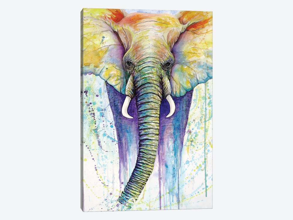 Elephant Colors by Michelle Faber 1-piece Canvas Print