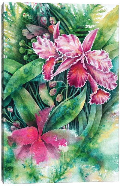 Pink Orchid Canvas Art Print