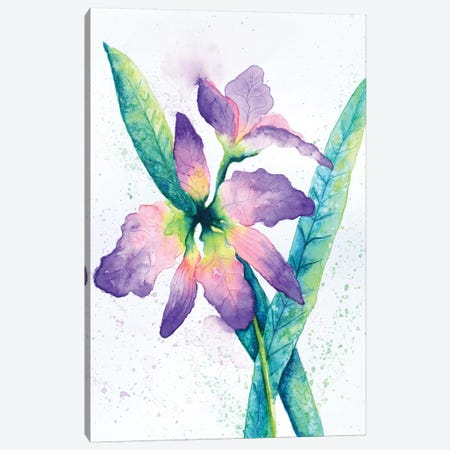 Purple Orchid Canvas Print #FAB42} by Michelle Faber Canvas Wall Art