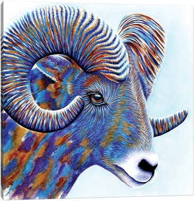 Ram Canvas Art Print