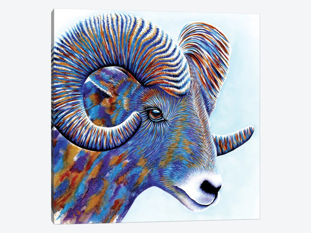 Ram by Michelle Faber 1-piece Canvas Artwork