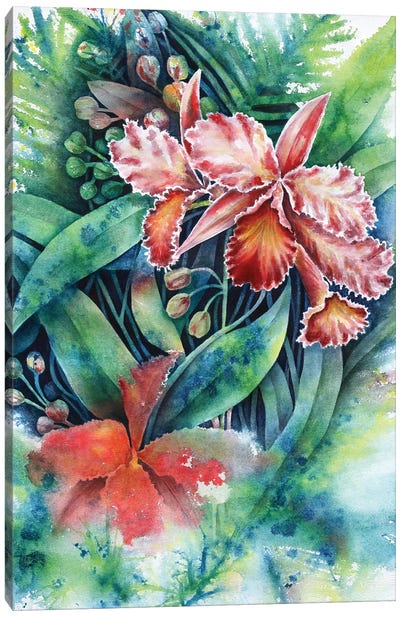Red Orchid Canvas Art Print