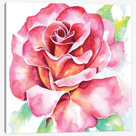 Rose Canvas Print #FAB45} by Michelle Faber Canvas Art Print
