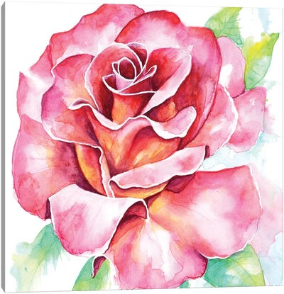 Rose Canvas Art Print