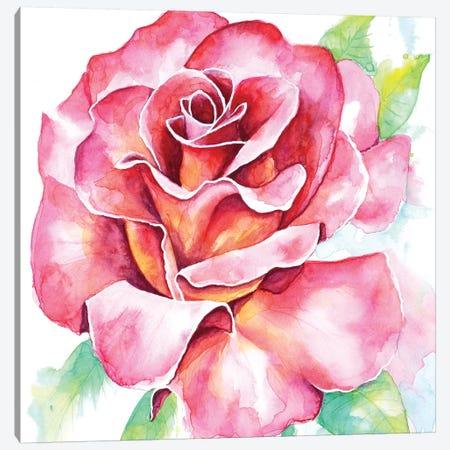 Rose Canvas Print #FAB45} by Michelle Faber Canvas Art Print