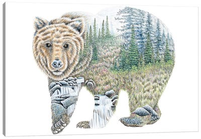 Scenic Bear Canvas Art Print