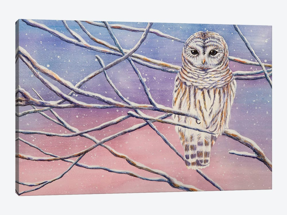 Snowy Barred Owl by Michelle Faber 1-piece Canvas Wall Art