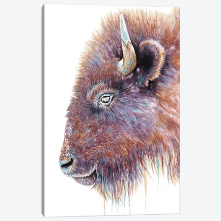 Spirit Of The West Buffalo Canvas Print #FAB49} by Michelle Faber Canvas Art