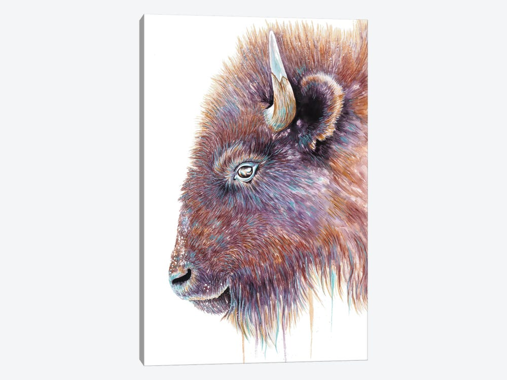 Spirit Of The West Buffalo by Michelle Faber 1-piece Canvas Artwork