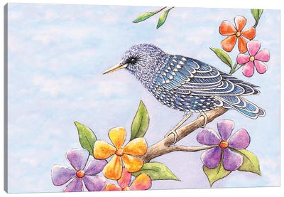 Starling Bird With Flowers Canvas Art Print