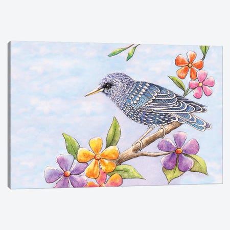 Starling Bird With Flowers 3-Piece Canvas #FAB51} by Michelle Faber Canvas Print