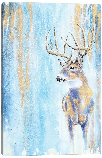 Winter Buck Canvas Art Print