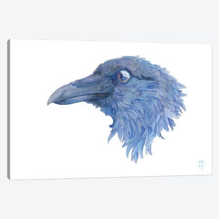 Raven Canvas Print #FAI111} by Might Fly Art & Illustration Canvas Art