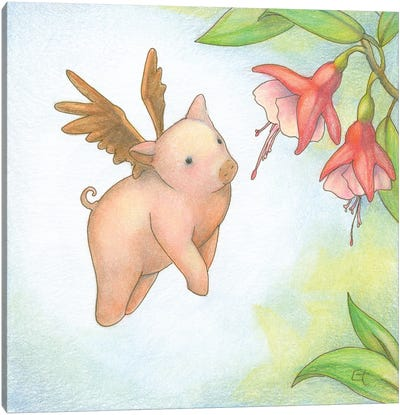 Humming Pig Canvas Art Print