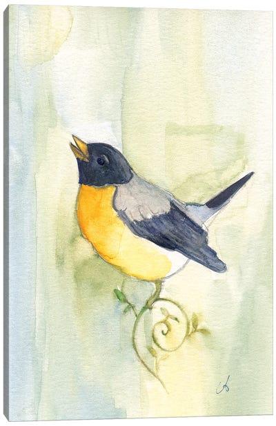 Song Bird Canvas Art Print