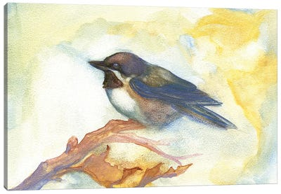 Chickadee In Fall Canvas Art Print