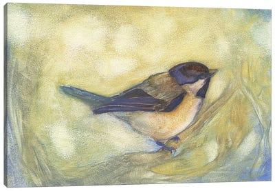 Chickadee in Dappled Sunlight Canvas Art Print