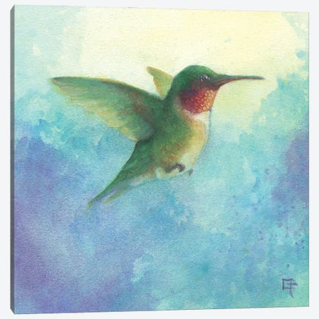Hummingbird in Flight Canvas Print #FAI50} by Might Fly Art & Illustration Canvas Artwork