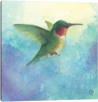 Hummingbird in Flight Canvas Art Print
