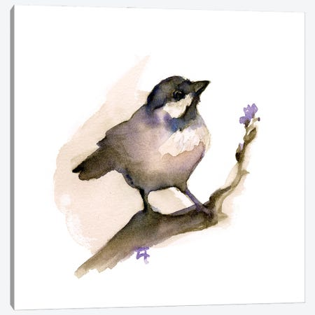 Perching Chickadee Canvas Print #FAI51} by Might Fly Art & Illustration Canvas Artwork