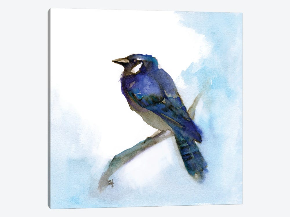 Blue Jay by Might Fly Art & Illustration 1-piece Art Print