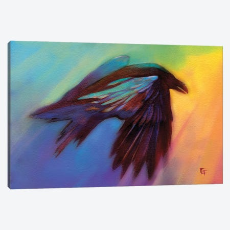 Raven in a Rainbow Canvas Print #FAI58} by Might Fly Art & Illustration Canvas Wall Art