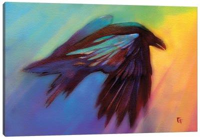 Raven in a Rainbow Canvas Art Print