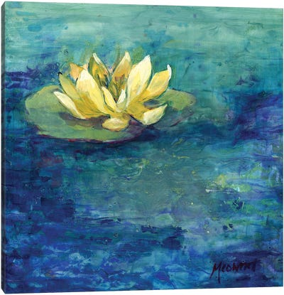 Yellow Water Lilly Canvas Art Print