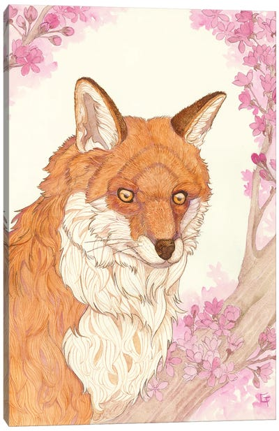 Fox And Blossoms Canvas Art Print