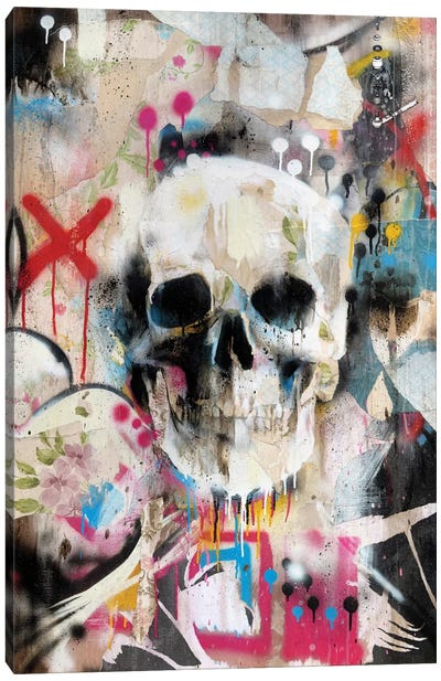 Skull Canvas Art Print