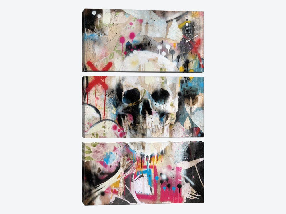 Skull by Famous When Dead 3-piece Canvas Art