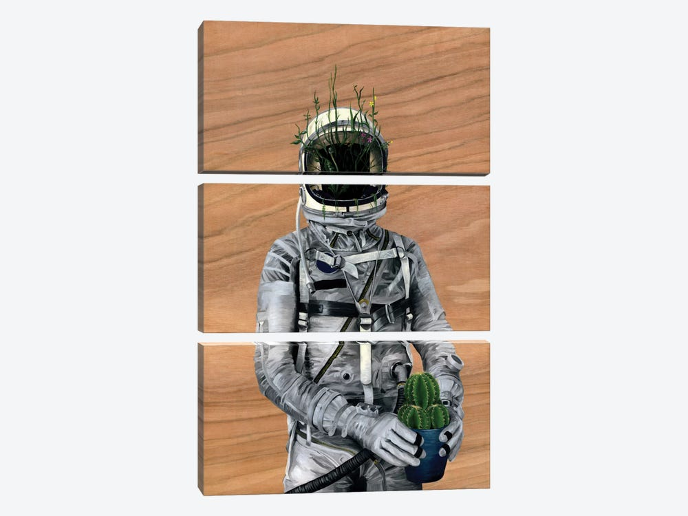 Spaceman I (Cacti) by Famous When Dead 3-piece Canvas Wall Art