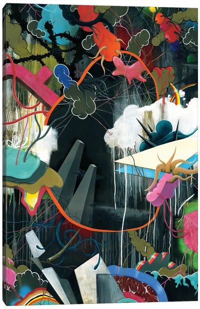 Anger Management Canvas Art Print
