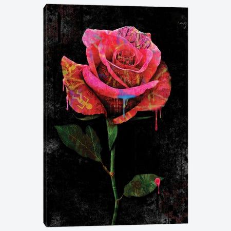 Rose Canvas Print #FAR26} by Frank Amoruso Canvas Art Print