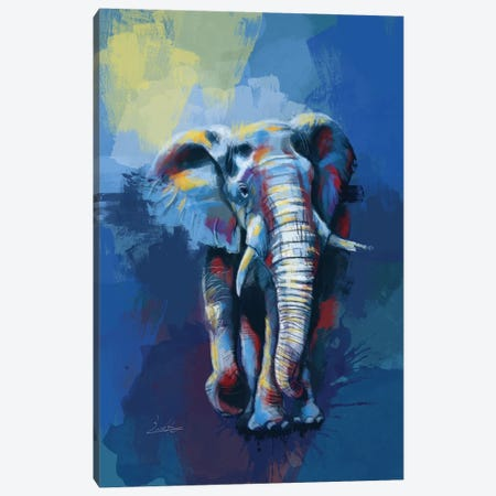 Elephant Dream Canvas Print #FAS18} by Flo Art Studio Canvas Wall Art